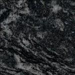 negro venus